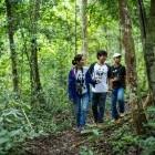 หางาน สมัครงาน WWF Greater Mekong Thailand 1