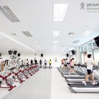 apply job Chulalongkorn Universi 2